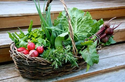 Vegetables-Featured.jpg