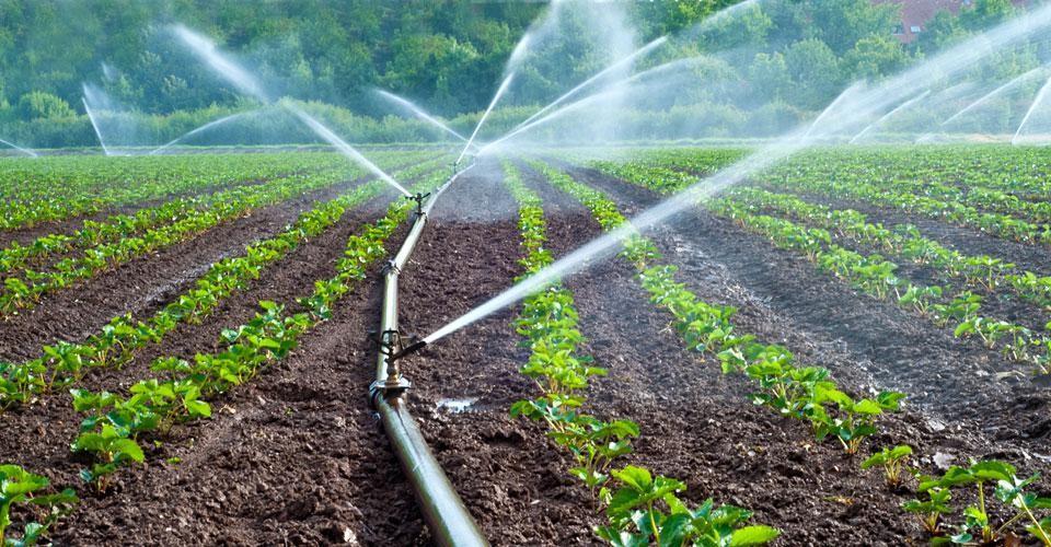 travelling irrigator hose