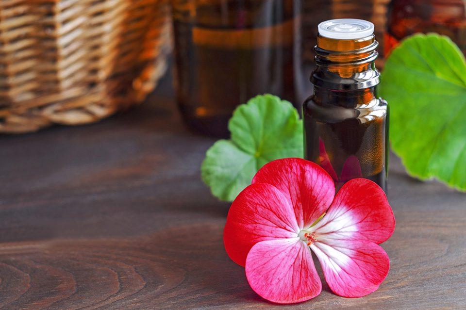 floral-Essential-geramium-oil-960x639.jpg