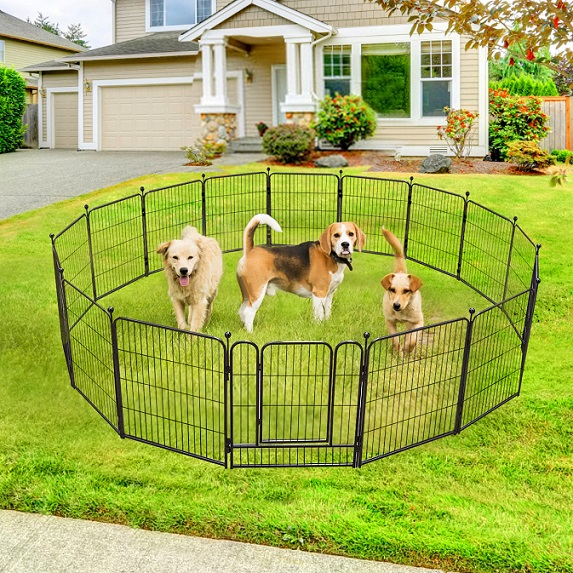 dogs with playpens