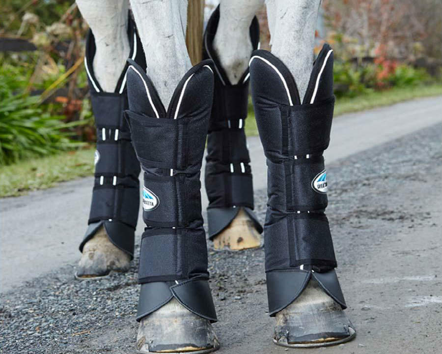 horse-float-boots3.jpg