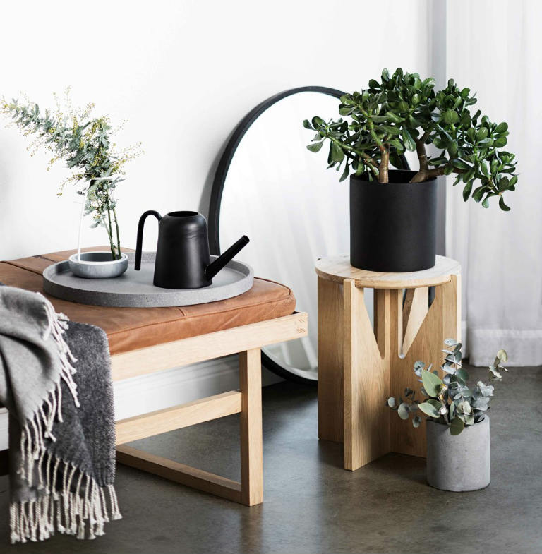 home decoration with concrete plant pots