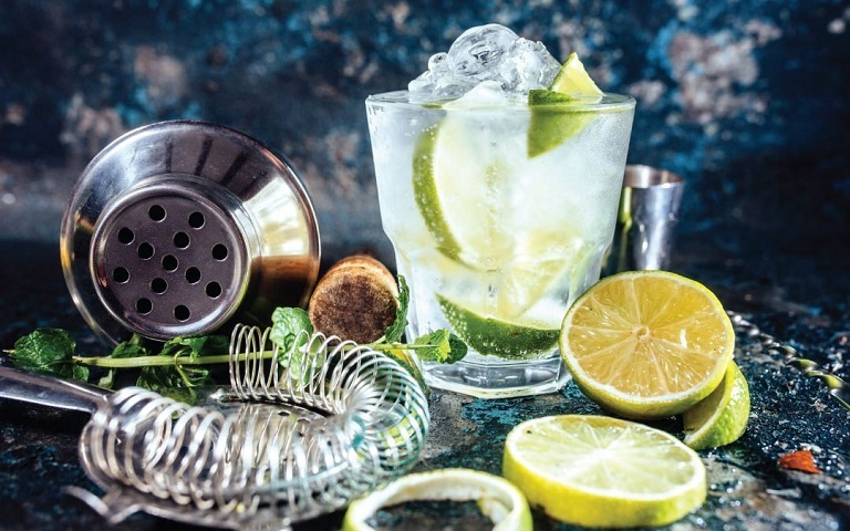 gin and tonic with green lemons and other things